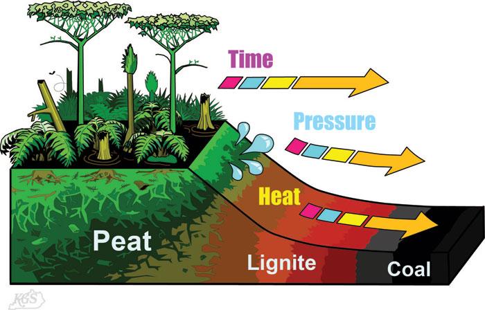 Carbon14 dating  scientific technology  Britannicacom